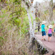 Family on a hike — Stock Photo #36922035