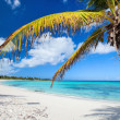 Idyllic beach — Stock Photo