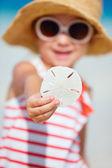 Dollaro di sabbia — Foto Stock