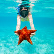 Stock Photo: Young womholding giant starfish