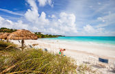 Beautiful Caribbean beach — Foto Stock