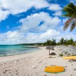 Beautiful Caribbean beach — Stock Photo #46971113