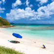 Picture perfect beach at Caribbean — Stock Photo #49856539