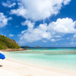 Picture perfect beach at Caribbean — Stock Photo #49856543