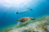 Young girl snorkeling with sea turtle — Stock Photo