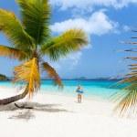 vackra tropiska stranden vid caribbean — Stockfoto #50236575