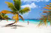 Beautiful tropical beach at Caribbean — Zdjęcie stockowe