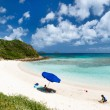 Picture perfect beach at Caribbean — Stock Photo #50623967