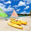 Catamarans at tropical beach — Stock Photo #50624617