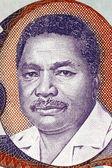 Ali Hassan Mwinyi — Stock Photo