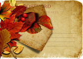 Vintage postcard with autumn leaves — Stock Photo