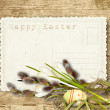 Vintage Easter card  with pussy-willow on a wooden background — Stock Photo