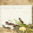 Vintage Easter card with pussy-willow on a wooden background — Stock Photo #21463579