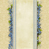 Vintage superb background with lace and blue flowers — Stock Photo