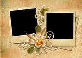 Vintage achtergrond met een polaroid-kader en een roos — Stockfoto