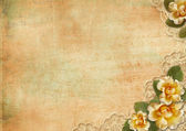 Vintage gorgeous background with a roses and lace — Stock Photo