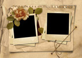 Vintage background with old polaroid frames and rose — Stock Photo