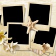 Vintage background with photo-frames and seashells — Foto Stock