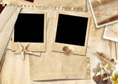 Vintage background with photo-frames and seashells — Stock Photo