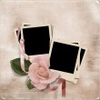 Vintage elegance background with card and rose — Stock Photo #28807553
