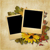 Vintage background with photo-frame and autumn leaves — Stockfoto