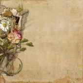 Pozadí s květinami a krajka — Stock fotografie