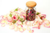 Roses and pearls — Stock Photo