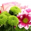 Stock Photo: Fine flowers