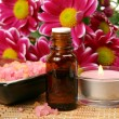 Subjects for an aromatherapy and massage - Foto de Stock