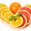 Ripe oranges and tangerines — Stock Photo