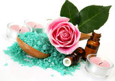 Subjects for an aromatherapy — Stock Photo
