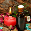 Oil for an aromatherapy - Stock Photo