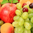 Stock Photo: Ripe fruit and berries