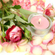 Rose and burning candle — Stock Photo