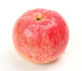 Ripe apple — Stock Photo