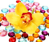 Brilliant ornaments and yellow orchid — Stock Photo