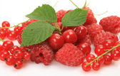Ripe berry — Stock Photo