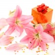 Pink lilies and gifts — Stockfoto