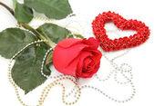 Rosa y corazón — Foto de Stock
