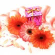 Gift and flower - Stock Photo