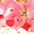 Pink lilies — Stock Photo #24237309