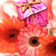 Fine flowers and boxes with gifts — Foto de Stock