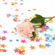Rose and ornaments — Stockfoto