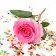 Pink rose — Stock Photo #26880587