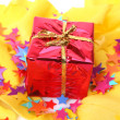 Box with a gift — Stock Photo #26882185