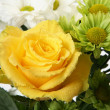 Yellow rose — Stock Photo #29271001