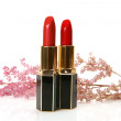 Decorative cosmetics. Lipstick — Stockfoto