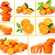 Stock Photo: Collage from ripe oranges and tangerines