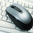 Stock Photo: The computer mouse and the keyboard