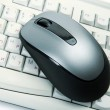 The computer mouse and the keyboard — Stock Photo